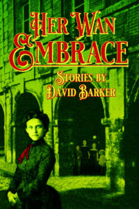 Cover Image for Her Wan Embrace
